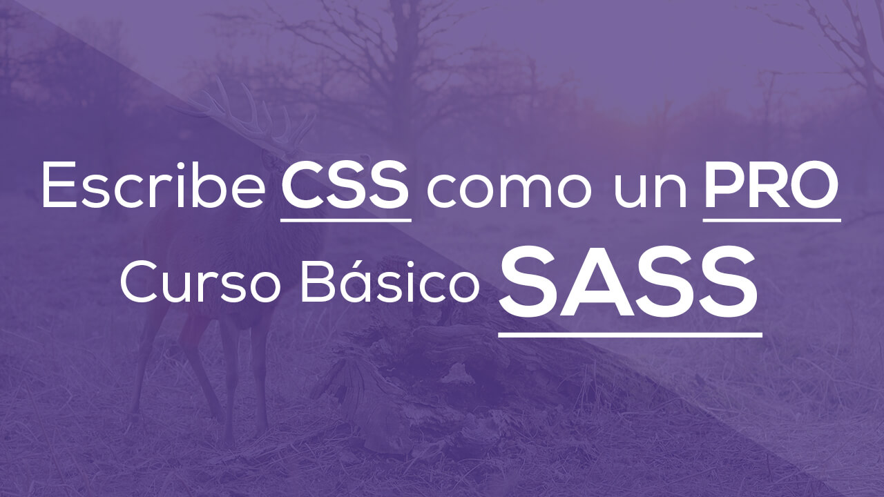 Escribe CSS como un PRO, Curso Básico de SASS
